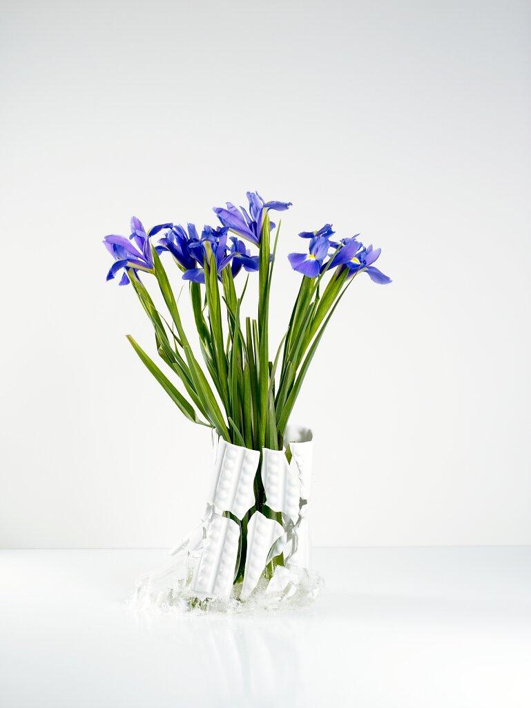 Zerbrochene Blumenvase